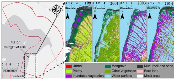 Hình 5. Thay đổi diện tích rừng ngập mặn giai đoạn 1995 - 2014