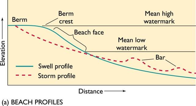 Mặt cắt bãi biển (tham khảo)