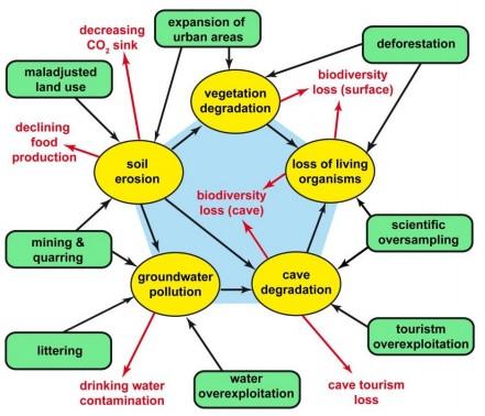 Hình 7. Sơ đồ biểu diễn các tác động liên kết với nhau ảnh hưởng đến hệ sinh thái karst và hang động (Theo Goldscheider, 2012) [3]