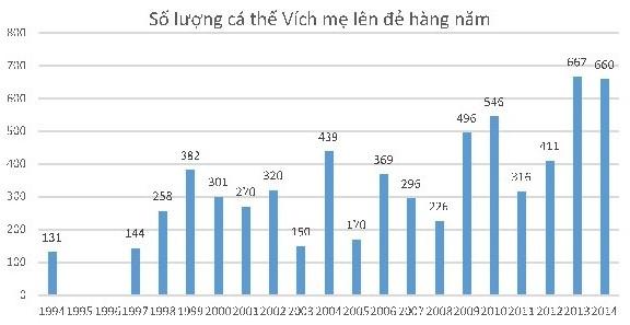 Hình 1: Số lượng Vích mẹ lên sinh sản giai đoạn 1994-2014