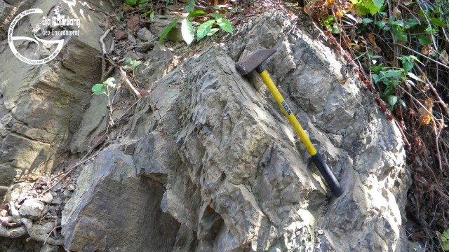 Hình 4. Cát kết hệ tầng Núi Cọp lộ chân vách phía nam Thạch Đông