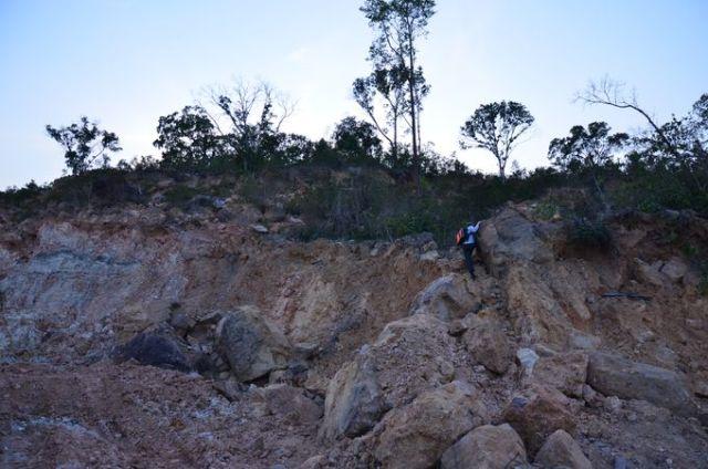 Thềm biển bậc 6 (cao 100 m) phía đông đỉnh 199 dãy Dương Đông