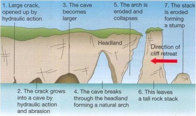 Hình 3. Tiến trình hình thành các cột đá sót (stacks). Nguồn: Internet
