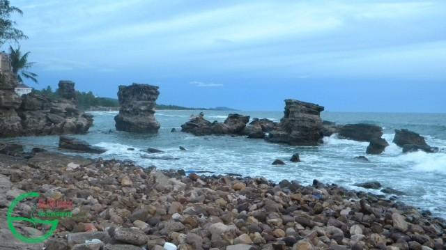 Hình 1. Các cột đá sót (stacks) do xói mòn tại mũi Dinh Cậu