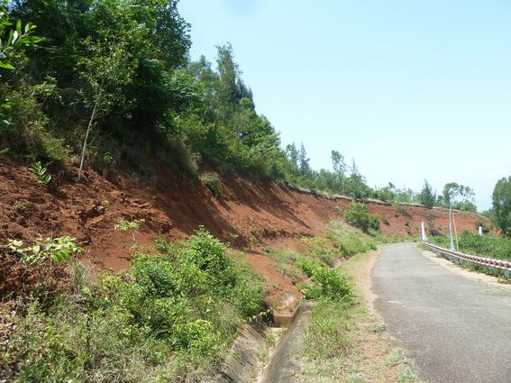 Mặt cắt lộ đất đỏ bazan