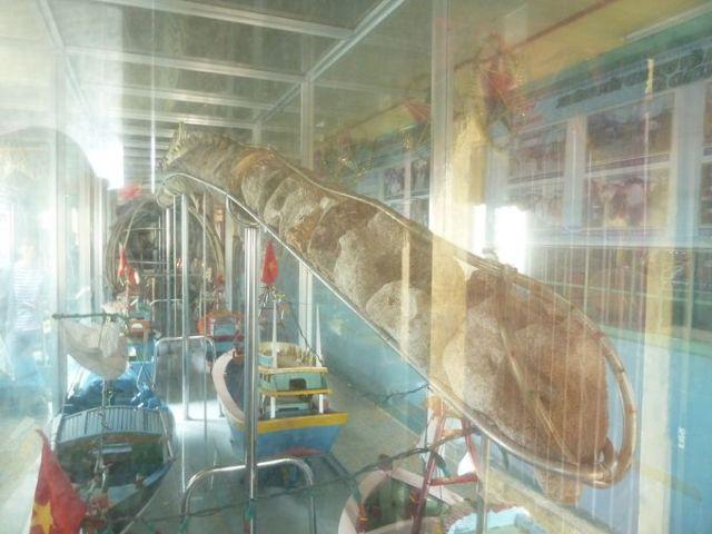 Bộ xương cá voi tại Lăng Ông, Cần Thạnh