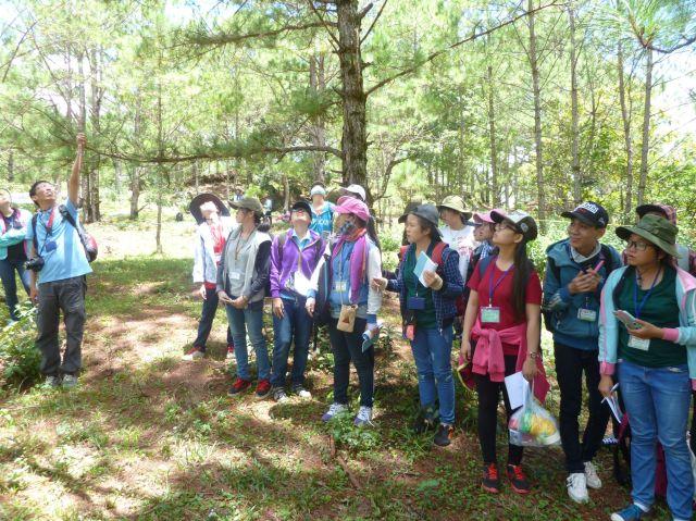 Thày Trường Ngân hướng dẫn đo vẽ ô thực vật tiêu chuẩn