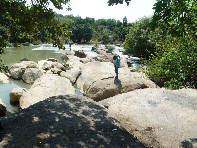 Hình 12: Dải đá granodiorit chắn ngang sông La Ngà tạo nên Thác Mai