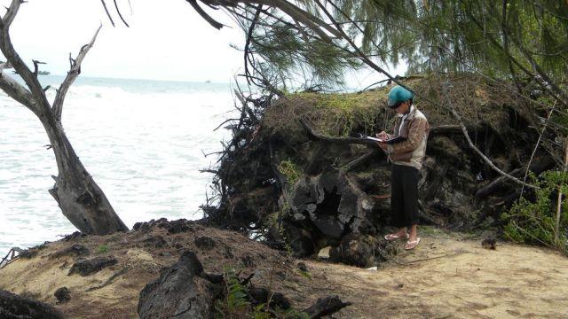Nam khảo sát xói lở bờ biển