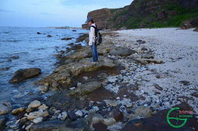 Hình 3: Cát kết san hô phủ trên cát kết tuf chứa khối và mảnh đá bazan