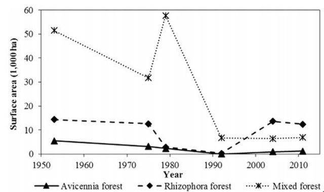 Hình. 4. Những thay đổi về diện tích RNM từ 1953-2011 tại Mũi Cà Mau, VN