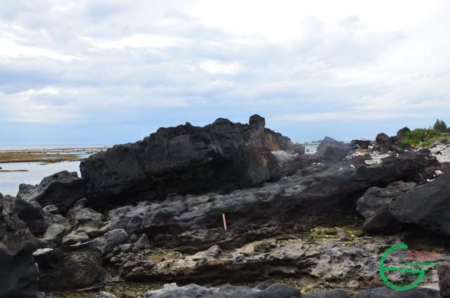 Hình 4: Bazan dòng chảy phủ trên cát kết san hô màu nâu tại bãi biển nam An Vĩnh