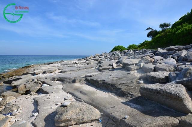 Hình 9: Bờ biển cát kết san hô mài mòn tại điểm lộ 476