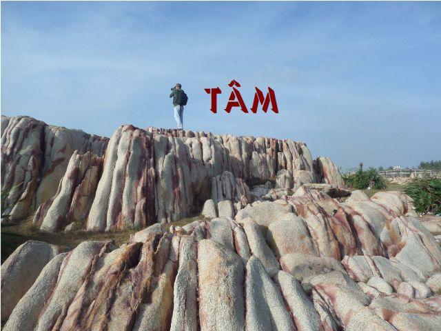 tam_1