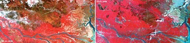 Hình 2. Diễn biến của Đồng Tháp Mười năm 1979 (trái) và năm 2005 (phải).