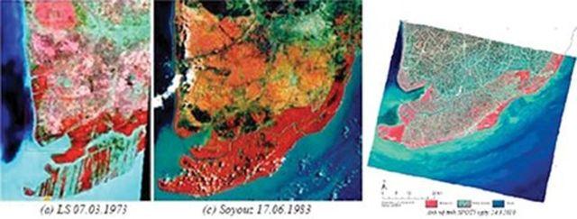 Hình 3. Diễn biến rừng ngập mặn ở Cà Mau. Ảnh vệ tinh từ trái qua phải 1973, 1983 và 2010.